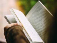 Diferencia entre novela y cuento